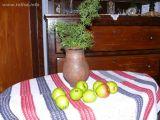Naziv slike:jabuke zelenke